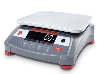 Ranger 4000 Bench Scale